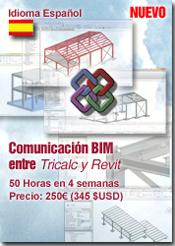 Curso COMUNICACION BIM, Tricalc y Revit